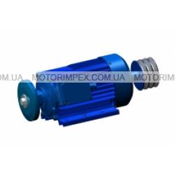 Трехфазные асинхронные электродвигатели AX100L